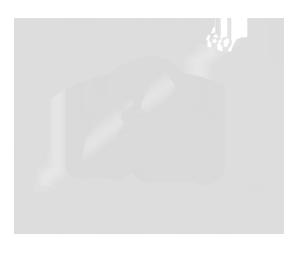 Opleiding Hondenosteopathie Michael Hamerslag
